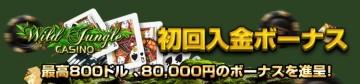ワイルドジャングルの最高80,000円の入金ボーナスをゲットしよう!