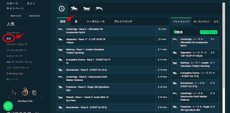 競馬-賭け方1