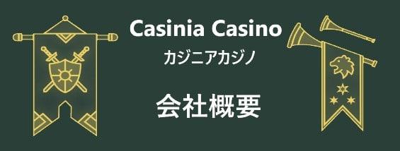 カジニアカジノ- 会社概要