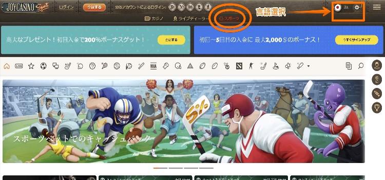 ジョイカジノ-サイトレビュー