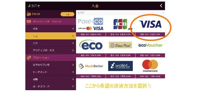 ラッキーニッキー 入金ガイドステップ2 Visaアイコンを選ぶ