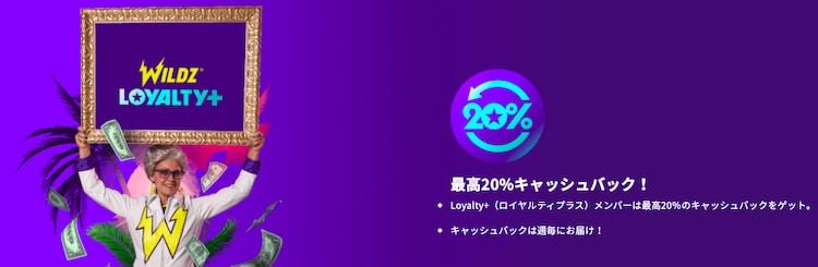 Wildz casino - VIPプログラム