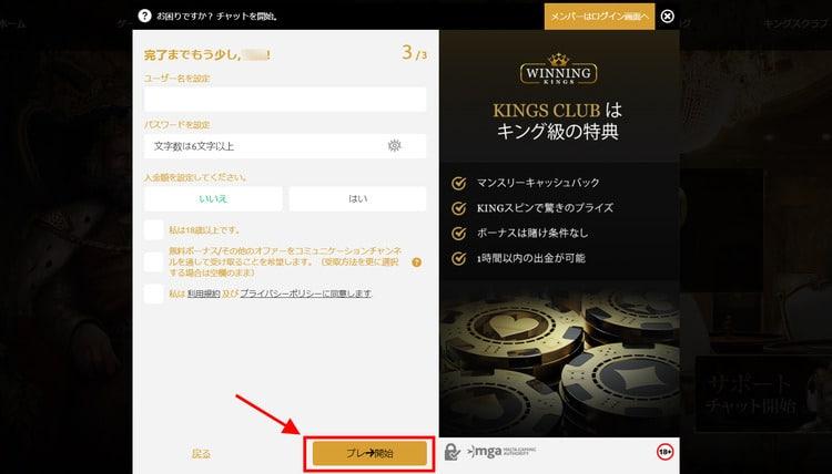 WinningKingsカジノ-登録方法4