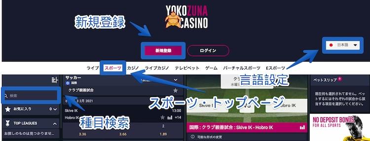 横綱カジノ-サイト評価